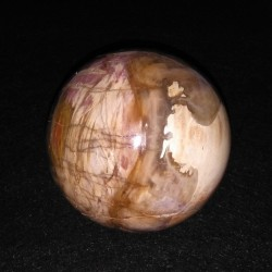 Bois fossile sphère ARM1