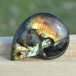 Labradorite taillée façon ammonite AMLB9