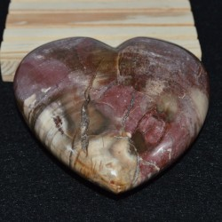 Bois fossile coeur COBF1