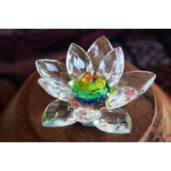 Lotus Feng-shui arc-en-ciel 2cm