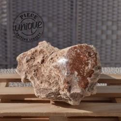 Bois fossile brut BFB06