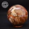 Bois fossile sphère 4