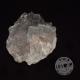 Fluorite de collecton
