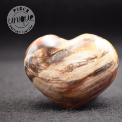 Madera fosilizada corazón COBF3