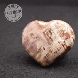 Madera fosilizada corazón COBF4