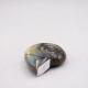 Labradorite taillée façon ammonite AMLB3